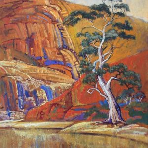 Splashout Workshops - Australian Landscapes