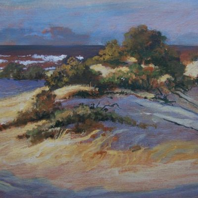 Coastal Dunes Workshop